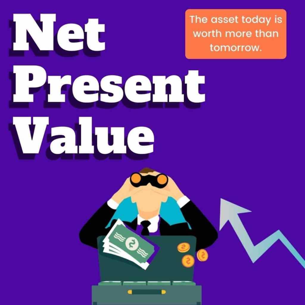 "alt=""net present value"""